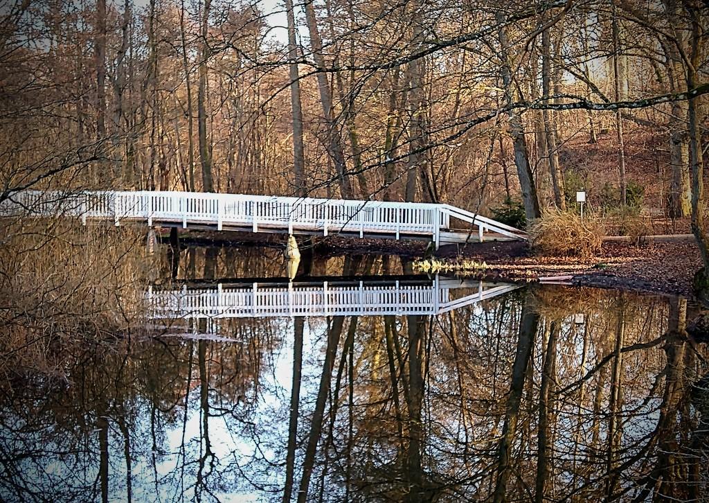 Mirroring by runner365