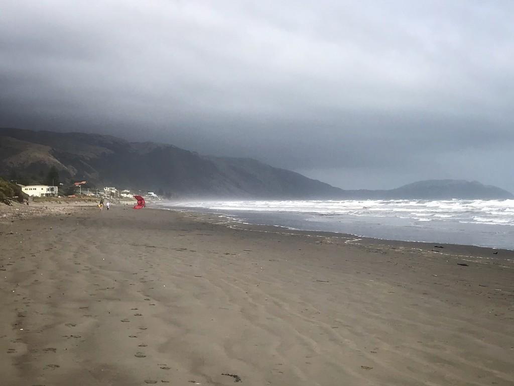 Paekakariki Beach by carolinesdreams