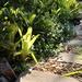 2021 04 04 The Garden Path