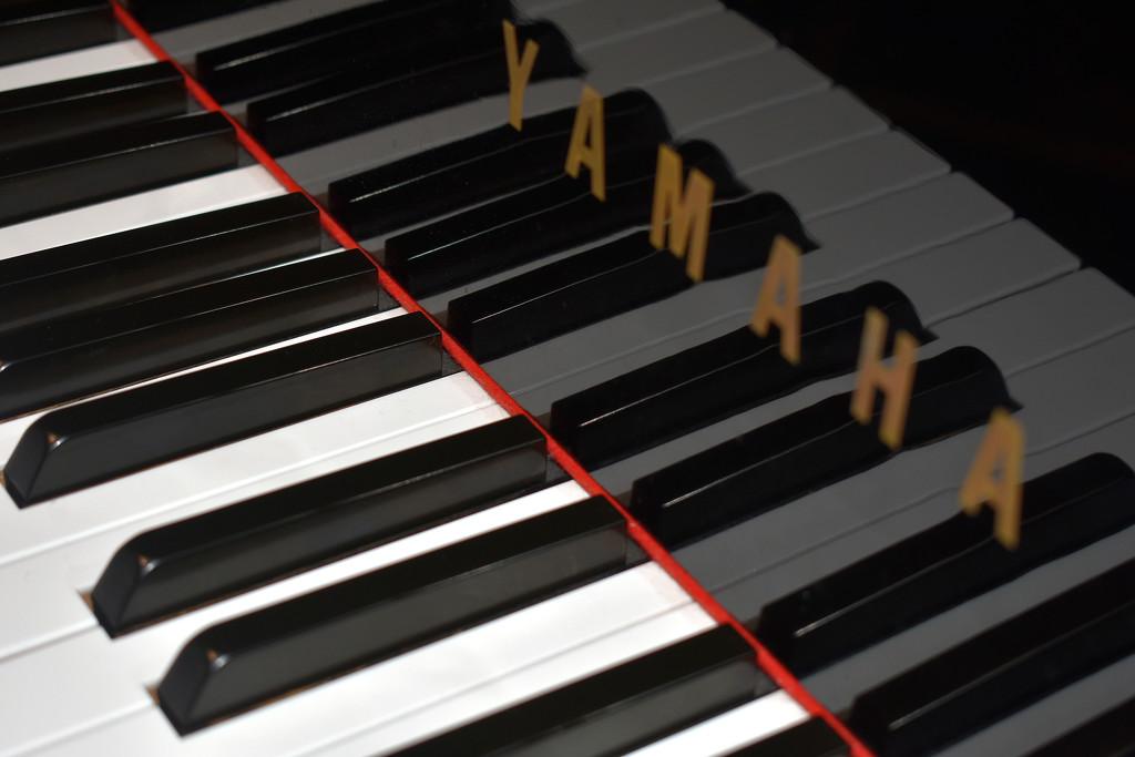 Piano 4 by homeschoolmom