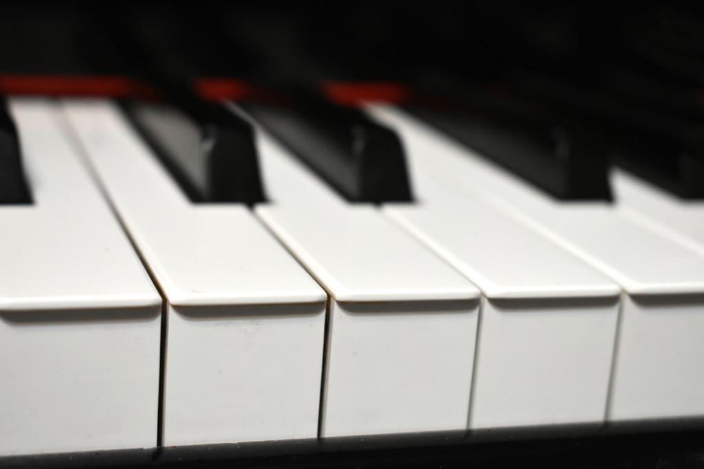 Piano 5 by homeschoolmom