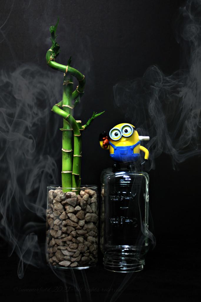 smokin'! by summerfield