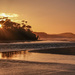 Sunrise, Papatowai Beach - the Catlins NZ