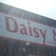 6th Apr 2021 - Names #5: Daisy