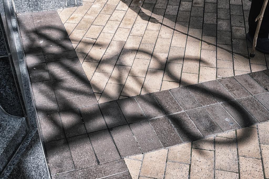 Shadow Art by helenw2