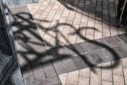 7th Apr 2021 - Shadow Art