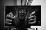 7th Apr 2021 - Doing a 52 Frames challenge and this week's theme was trapped.