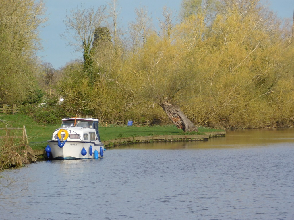 First boating visitors of the year by 365anne
