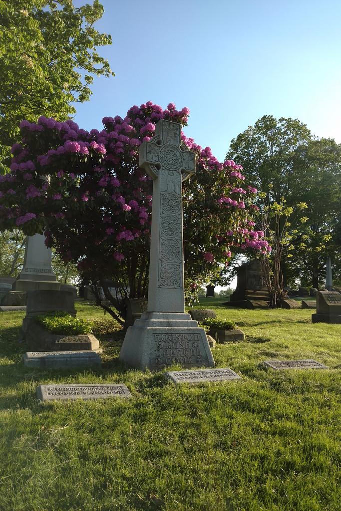 Cemetery Walk by steelcityfox