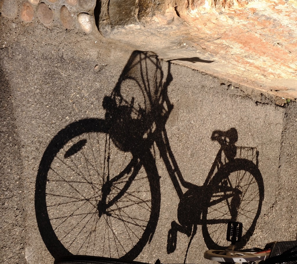 The Flying bicycle by caterina
