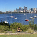 7 Days of Cremorne Point Loop Walk - 4