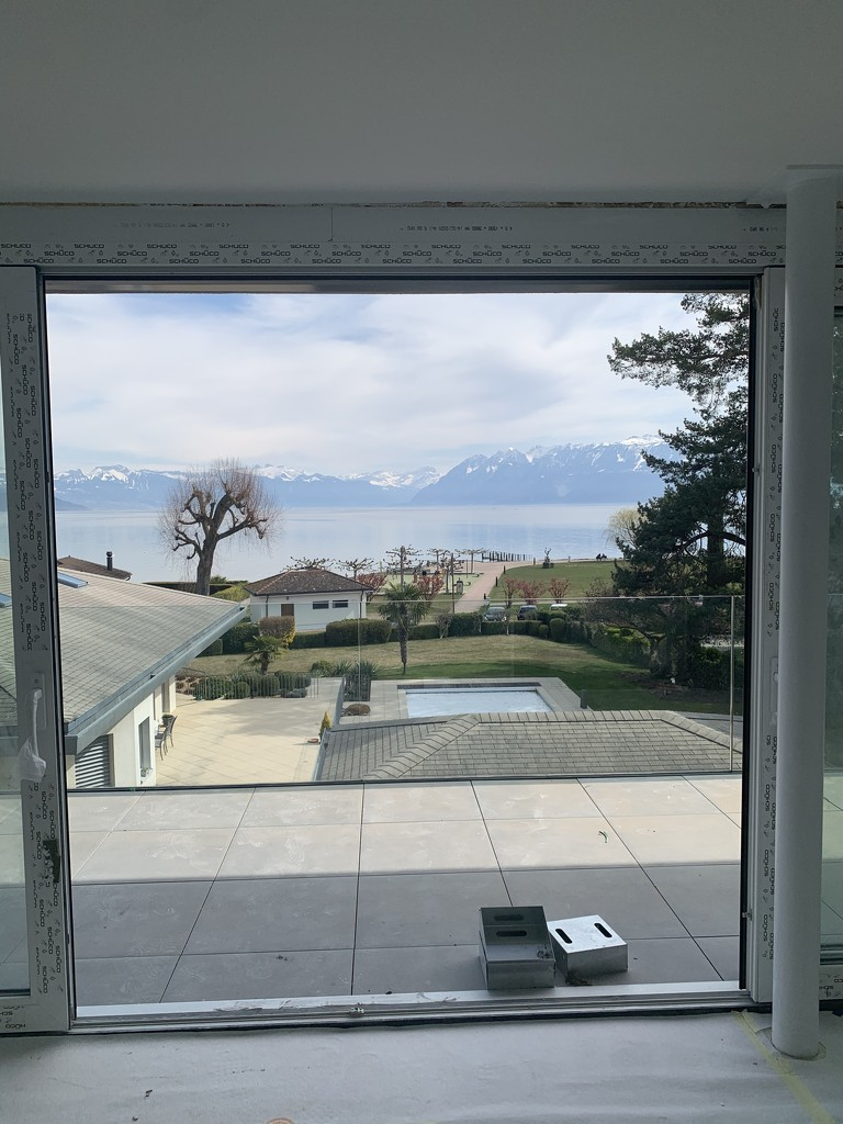View from the future bedroom.  by cocobella