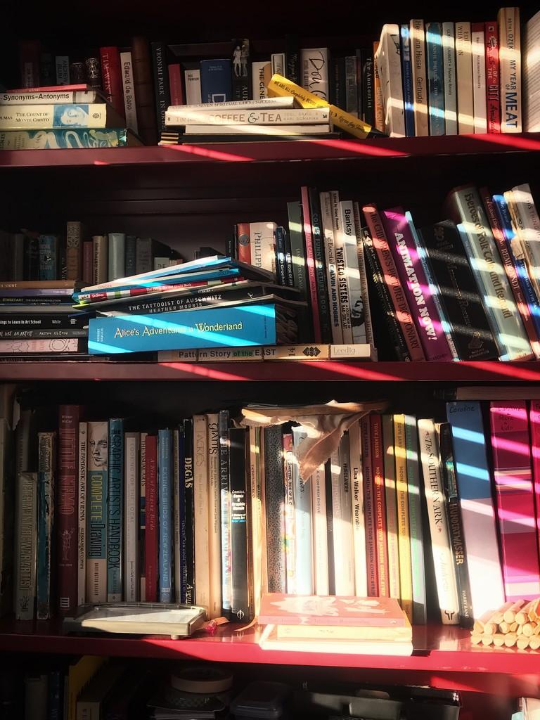 Bookshelf by carolinesdreams