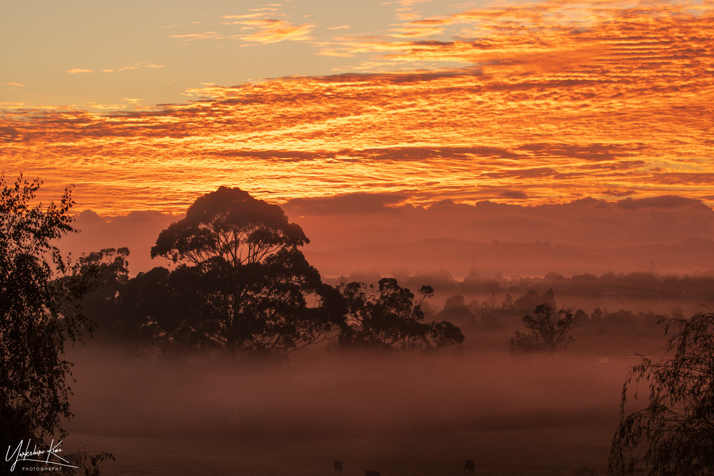 Another misty sunrise by yorkshirekiwi