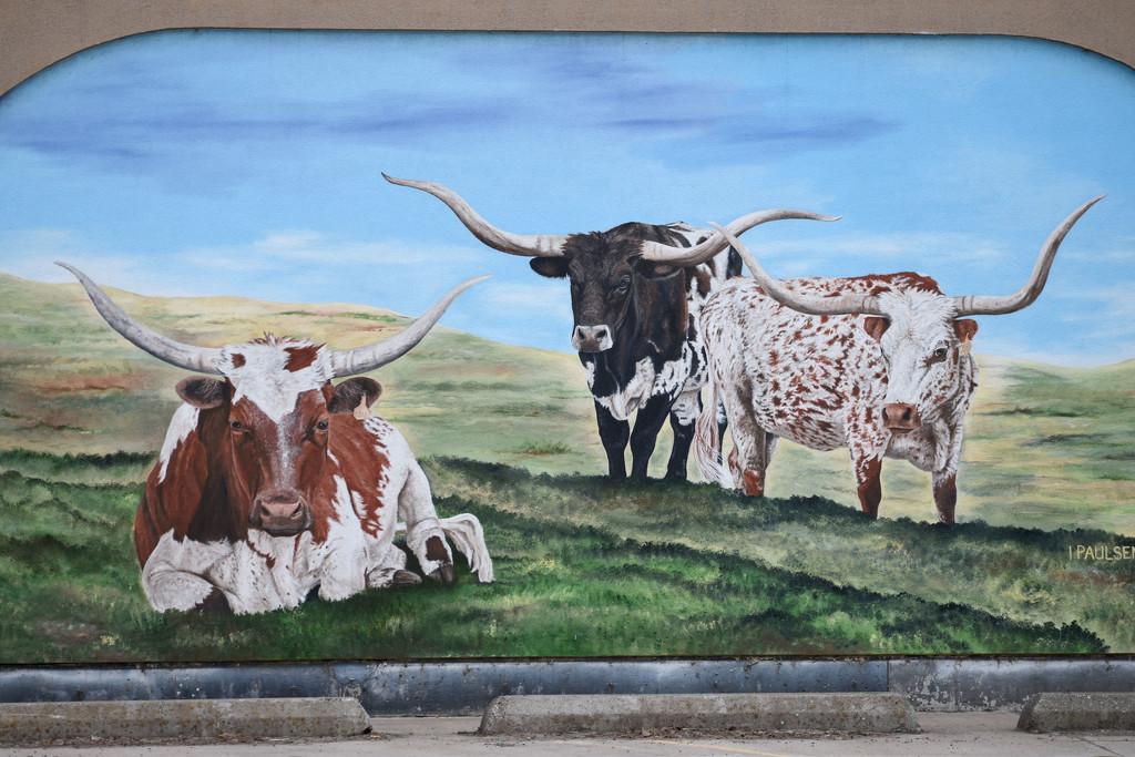 Longhorns Mural In Plains, Montana by bjywamer