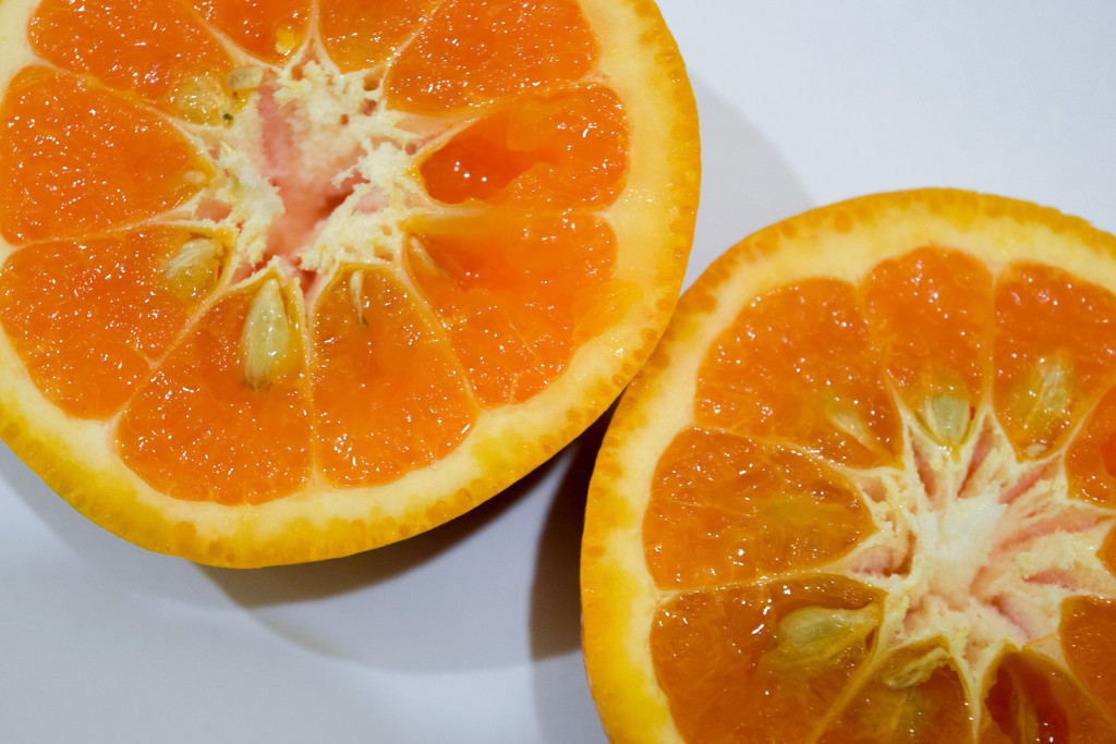 Orange!  by adristiamalia