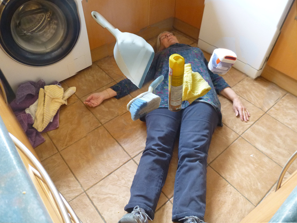 Killed by Housework Don't Risk It! by 30pics4jackiesdiamond