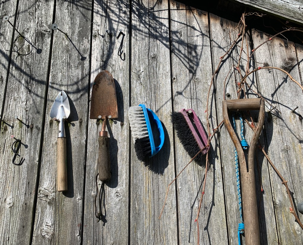 Ready & waiting.....garden tools. by happypat