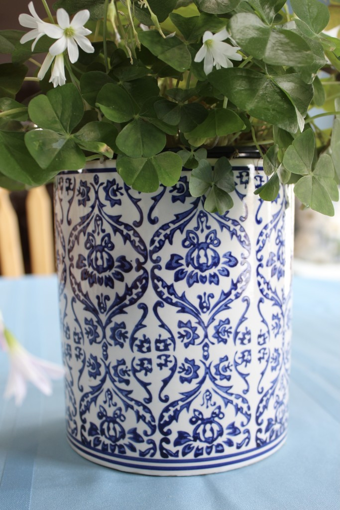 Pretty flowerpot by jb030958