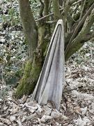 28th Mar 2021 - Towel