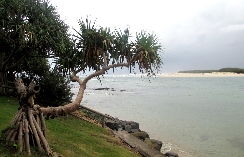 Caloundra beach views by 777margo