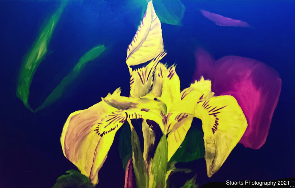 Flower (painting) by stuart46