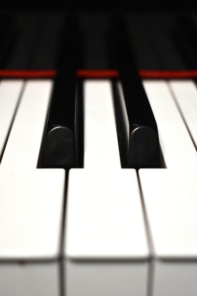 Piano 7 by homeschoolmom