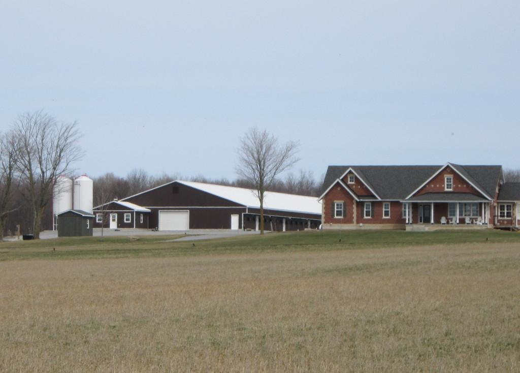 Farm 2 by bruni