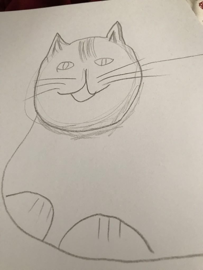 Cat by tatra