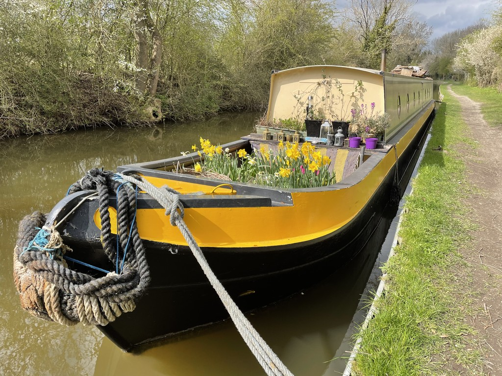 Spring time on the canal by photopedlar