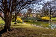10th Apr 2021 - Garnish of Spring Color at the Bridge