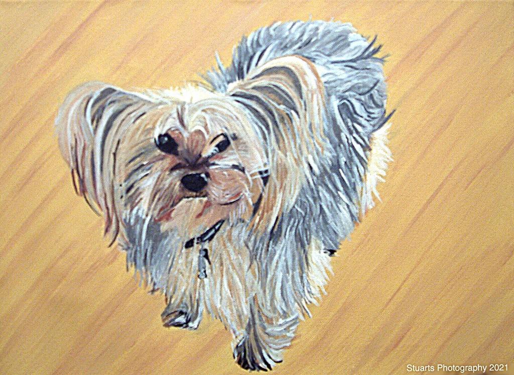 Dog (painting) by stuart46