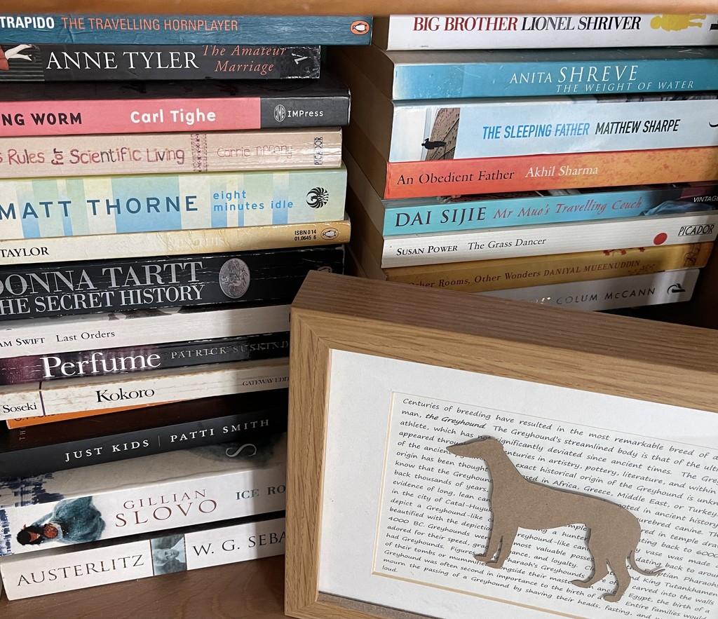 Greyhound Corner by tinley23