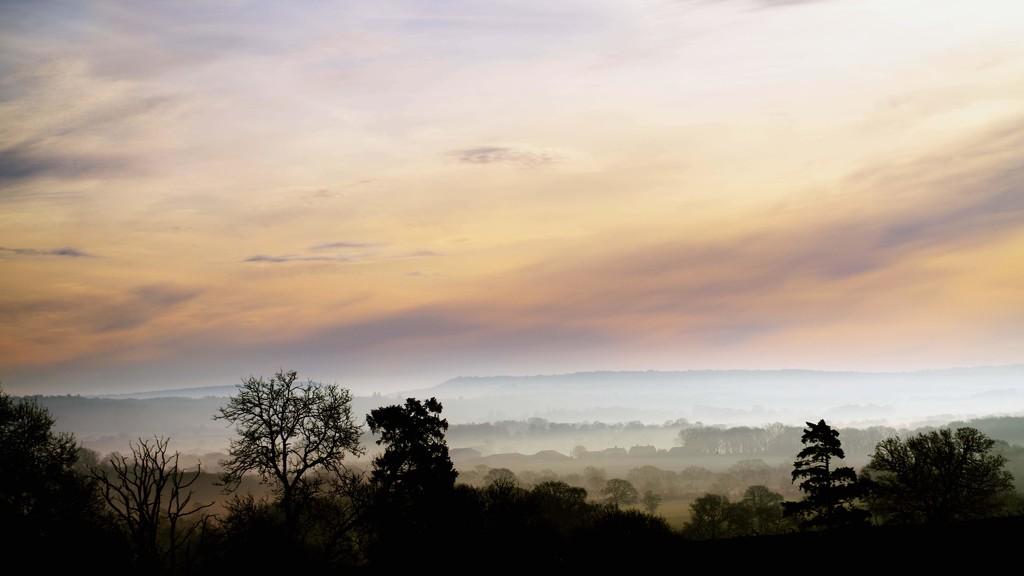 Dawn mist over home by moonbi