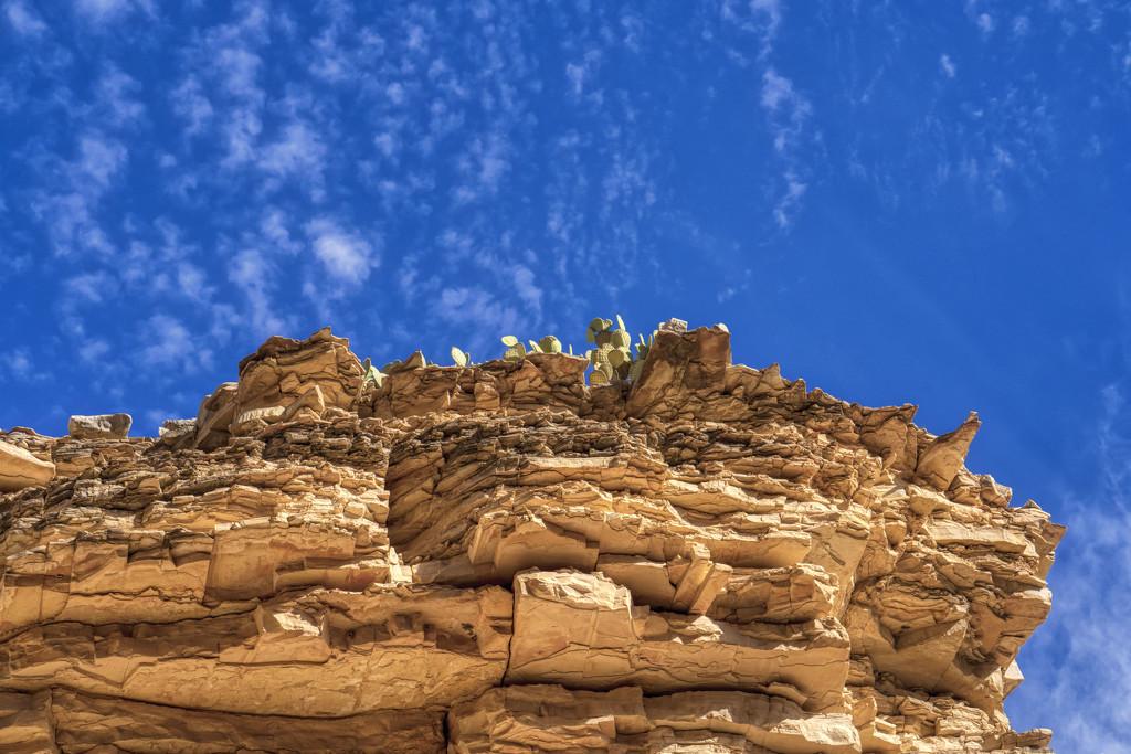 Ernst Tenaja Canyon Wall by kvphoto