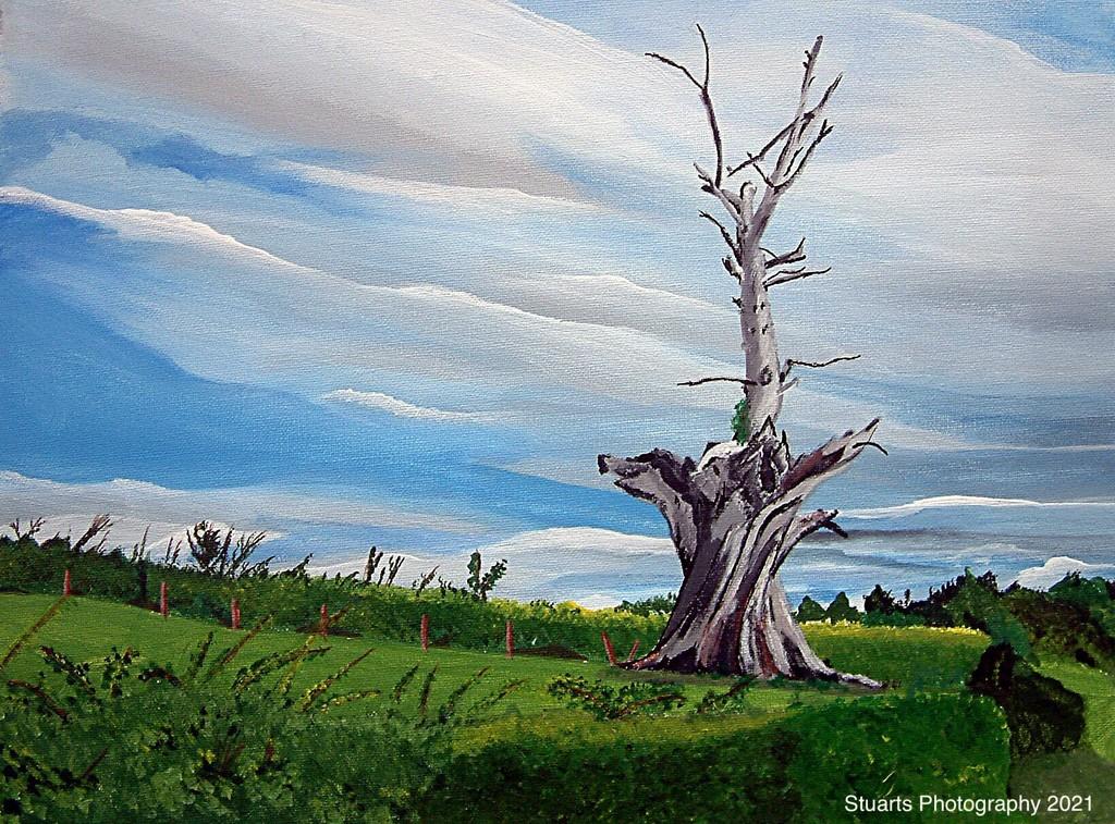 Deadwood (painting) by stuart46