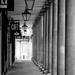 Columns by tracybeautychick