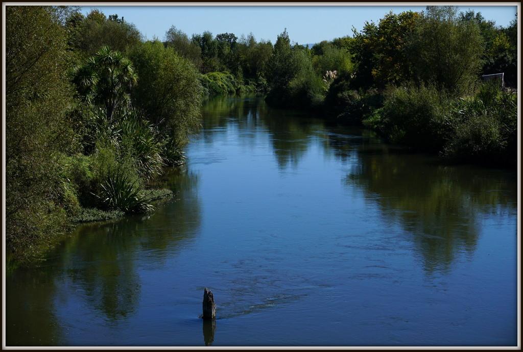Waihou River by dide