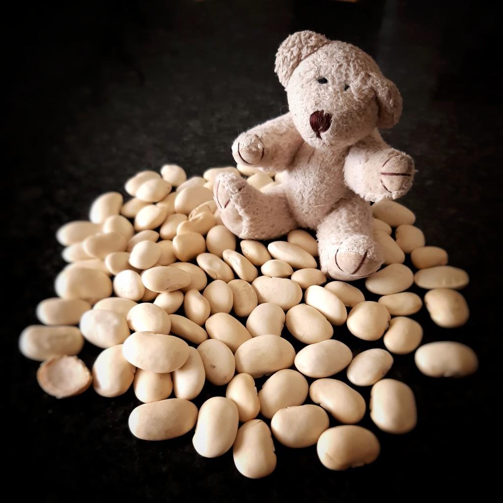 Bean Counter  by salza