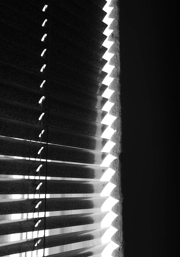 Shadows by stiggle
