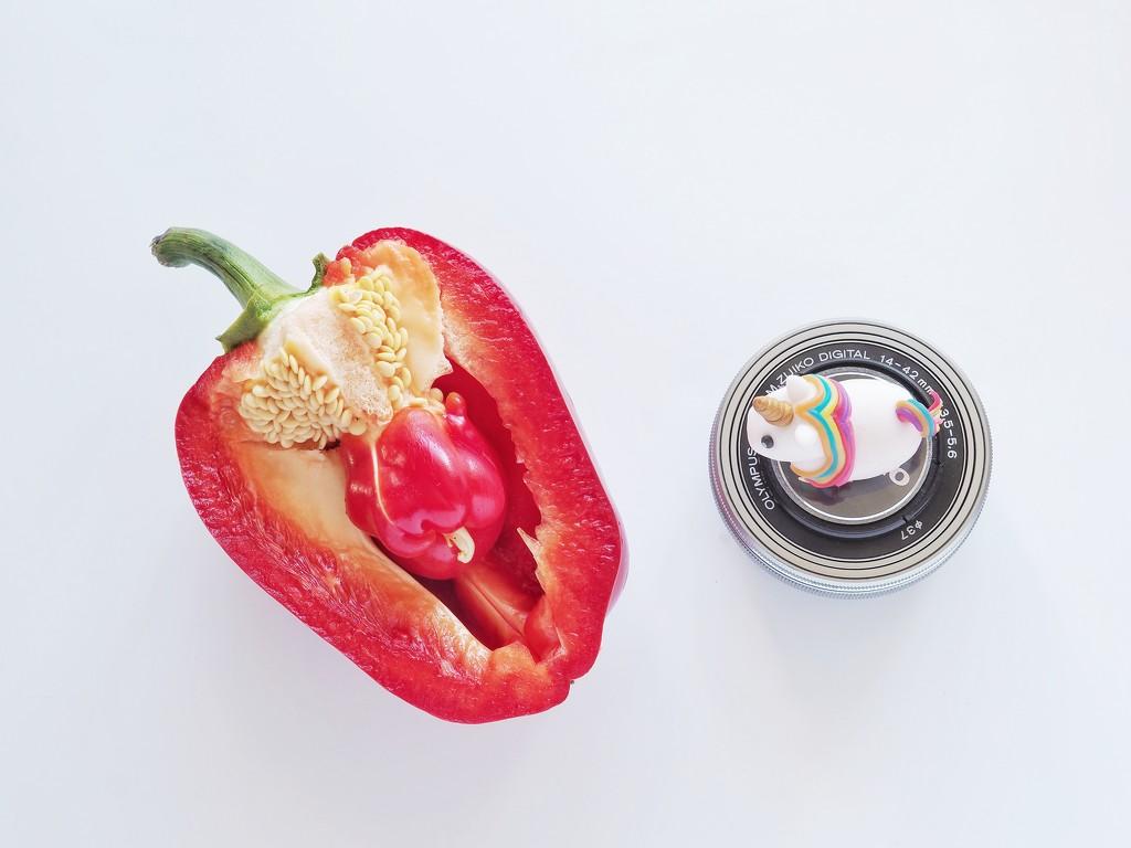 Pregnant bell pepper by monikozi