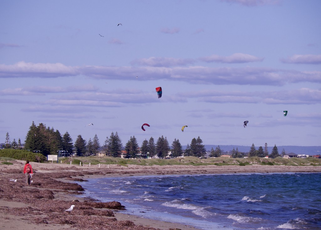 Kites And Clouds At Safety Bay _4141021 by merrelyn