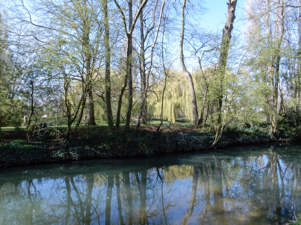 The River Ivel in Blunham by busylady