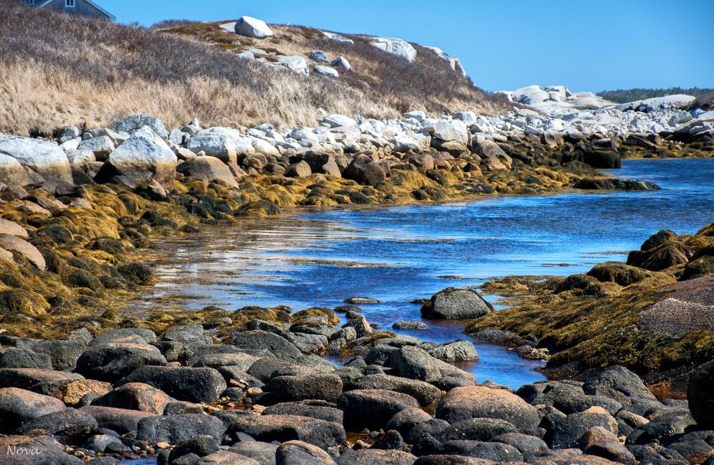 Low tide by novab