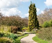 14th Apr 2021 - Winter Garden