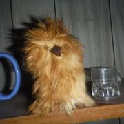 14th Apr 2021 - Owls #6: Ookpik