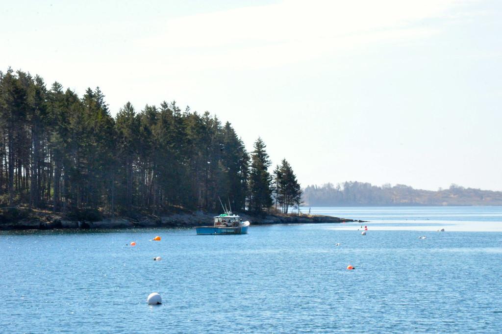 Lobsta boat......... by sailingmusic