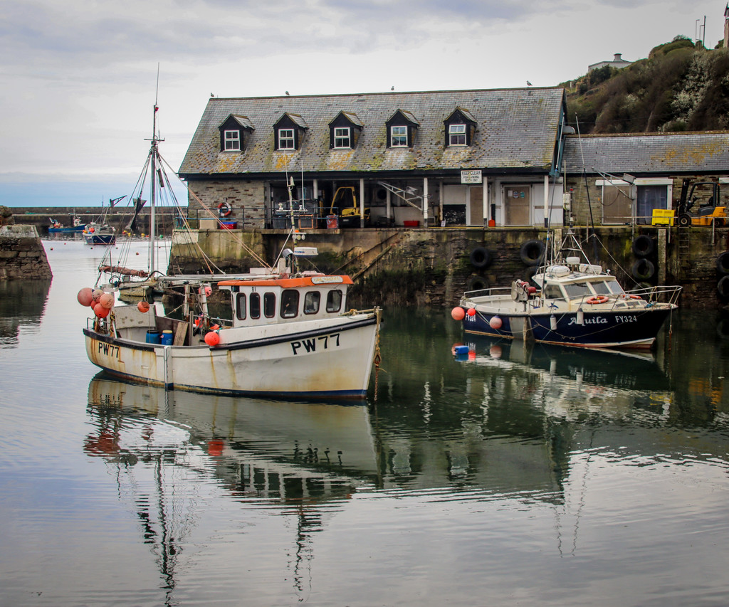 The fish shed in Mevagissey by swillinbillyflynn