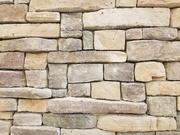 11th Apr 2021 - Up against a brick wall