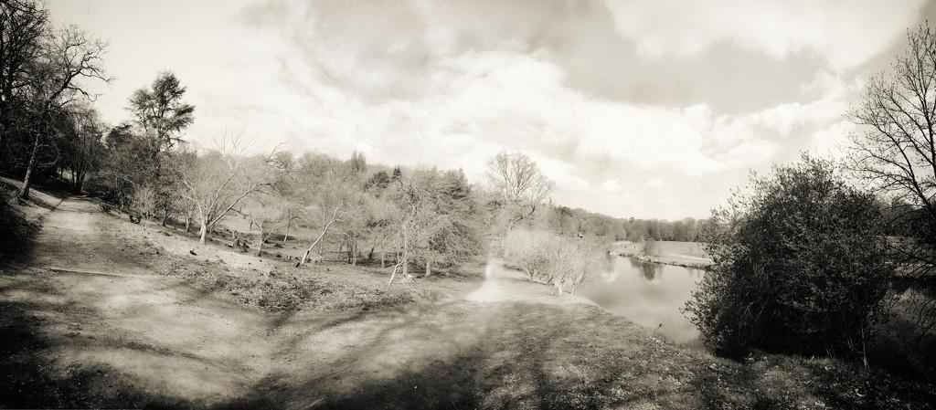 Winkworth Arboretum panorama by rumpelstiltskin